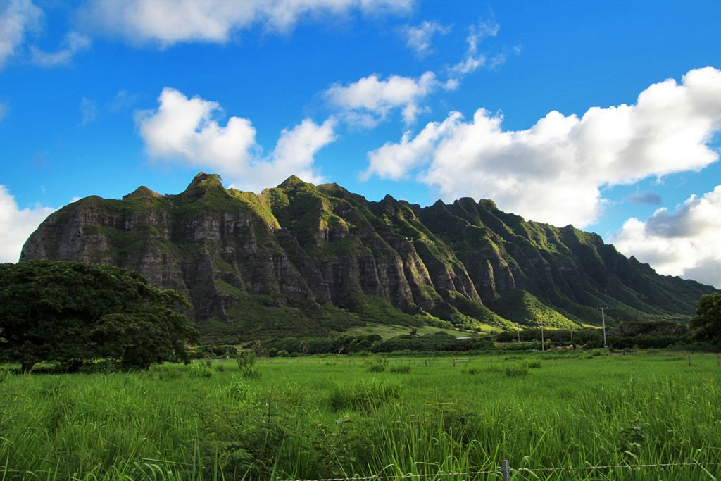 The valley at Kualoa Ranch where they filmed movies such as Jurassic Park.